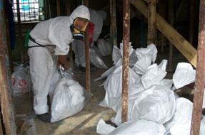 Opérations de retrait de matériaux contenant de l'amiante (MCA) Martinique