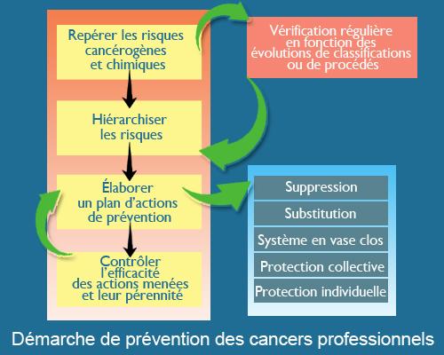 Schéma de prévention des cancers professionnels
